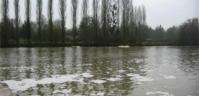 La mousse sur la rivière