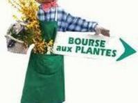 Bourse aux plantes de printemps